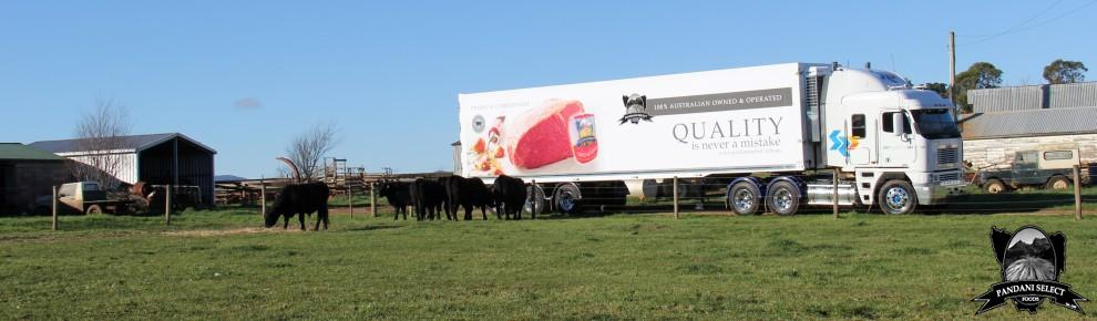 PANDANI SILVERSIDE TRAILER ADVERTISEMENT ON LOCATION AT DUNLOP PARK ANGUS STUD